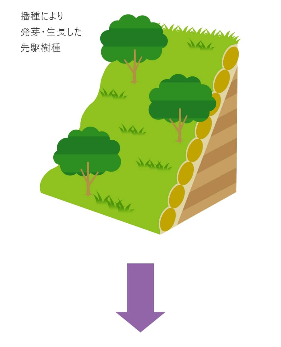 バイオ・オーガニック工法図その1