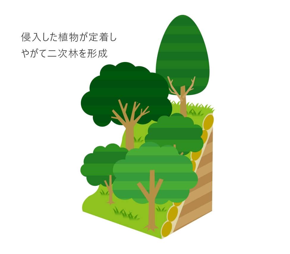 バイオ・オーガニック工法図その3